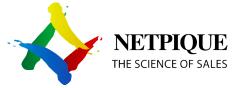 Netpique company logo