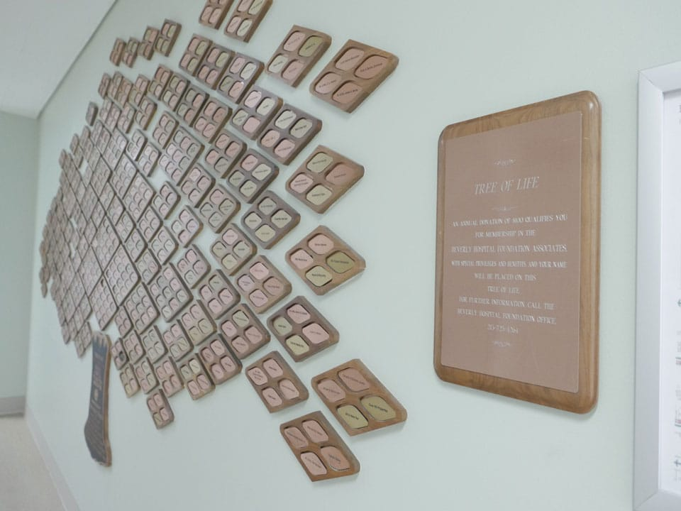 Tree of Life plaques for donor recognition at Beverly Hospital.