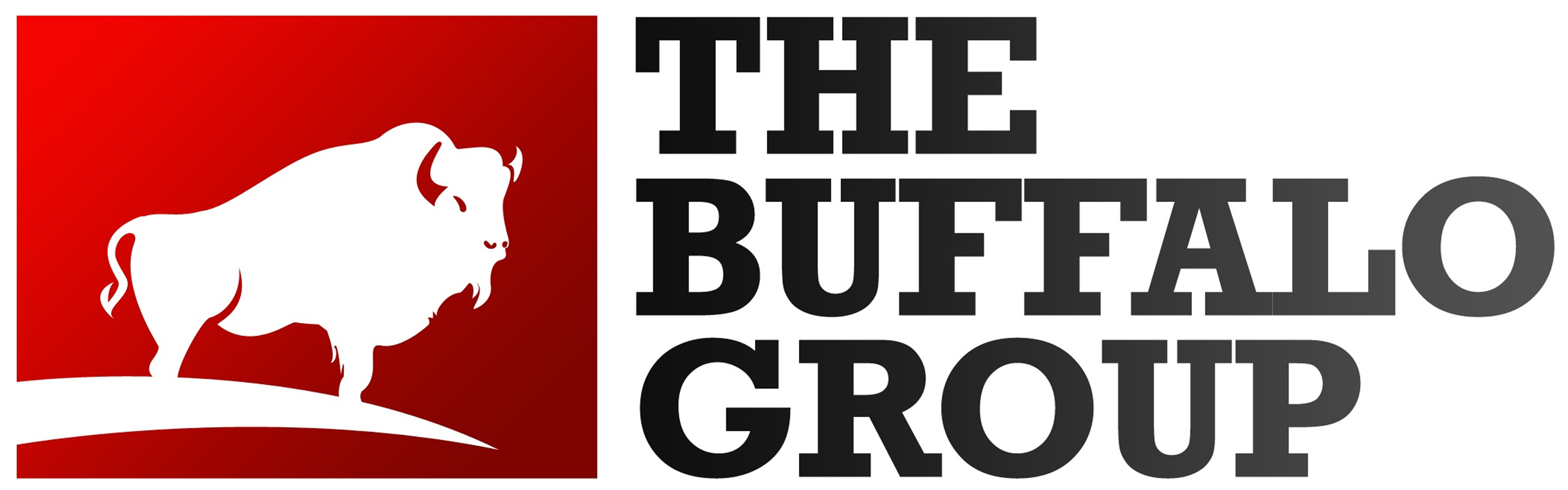 The Buffalo Group Company Logo
